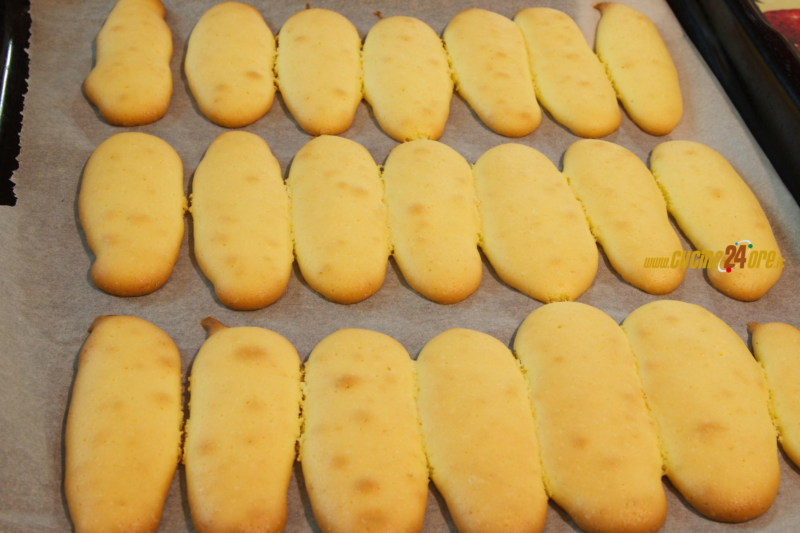 Ricetta Savoiardi Fatti In Casa Da Benedetta.Savoiardi Leggeri E Fraganti Senza Glutine Ricette Di Cucina