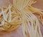 cucina tagliatelle all'uovo senza glutine guanciale e crema di parmigiano17