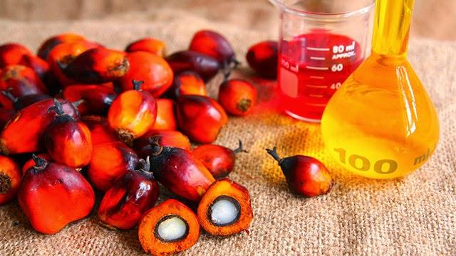 L'olio di palma fa male. Le 10 cose da sapere assolutamente e la lista dei prodotti dove non c'è