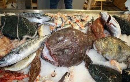 Poche calorie e tanto gusto, la rana pescatrice o coda di rospo ai pomodorini secchi, maggiorana e buccia di limone