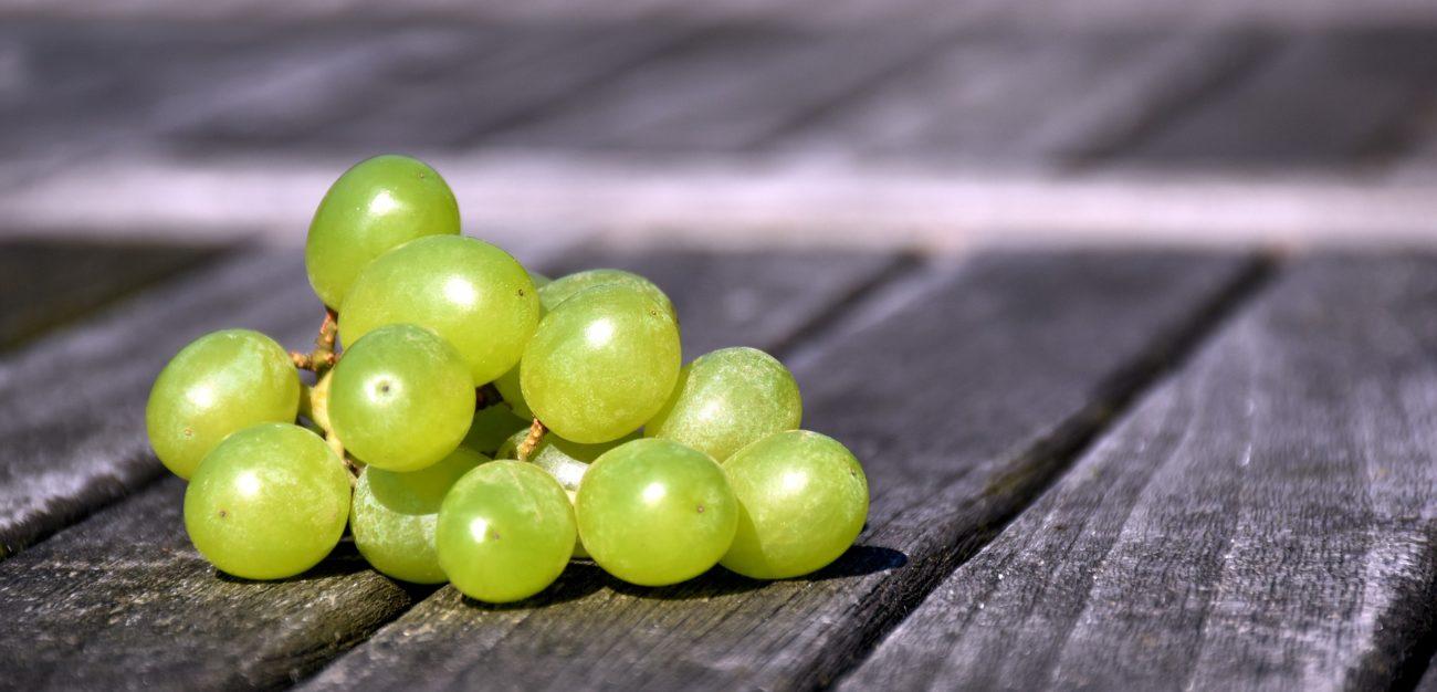 I Semi dell'Uva Fanno Dimagrire? Cosa c'è di Vero!